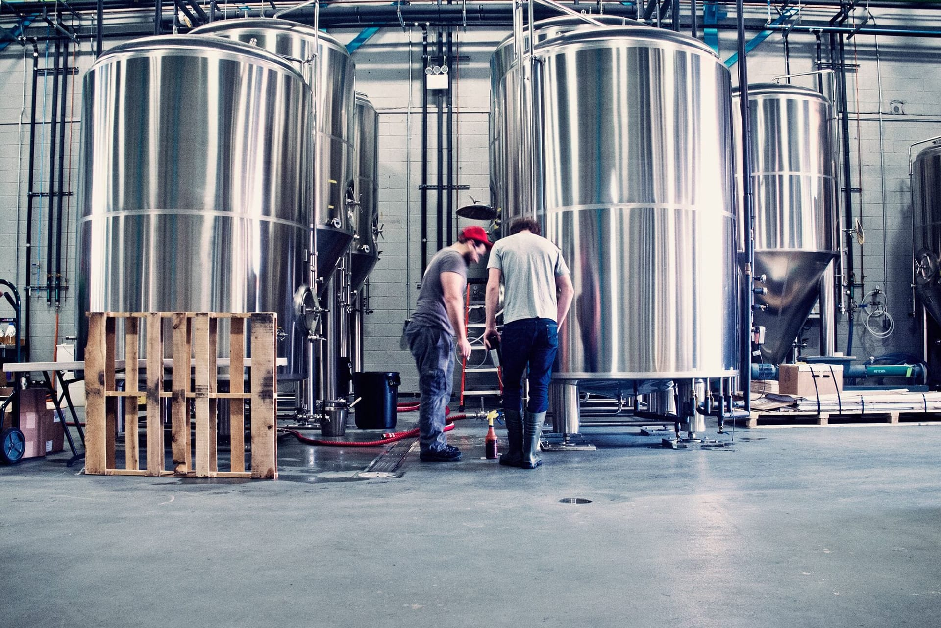 Behind the scenes at the brewery